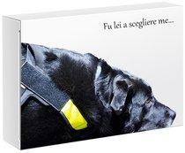 La sedia di Lulù. Confezione regalo con libro e cd - Alessandra Santandrea, Marina Casciani | Libro | Itacalibri
