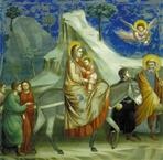 Biglietto natalizio. Giotto - Fuga in Egitto: (biglietto comprensivo di busta). Giotto | Biglietti | Itacalibri