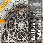 Ad usum fabricae: L'infinito plasma l'opera. La costruzione del Duomo di Milano. Mariella Carlotti, Martina Saltamacchia | Libro | Itacalibri